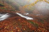 Копренска есенна мистика ; comments:22