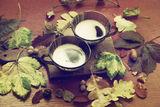 Кофе с молоком ... и осень ; comments:4