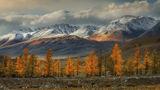 Есен в Алтай ; comments:61