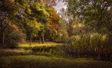 Край езерото ; comments:9