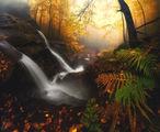 Есенни настроения ; comments:51