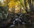 Есента... ; comments:11