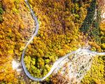 Есен в Средна гора ; comments:6