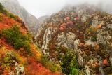Есен в Балкана ; Comments:13