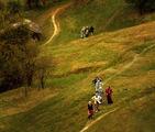 Живот в Родопите ; comments:27