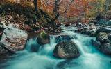 Есен край реката ; comments:2