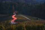 Едно сърце в Словения... ; comments:37