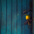 Завинаги затворени врати ; comments:43