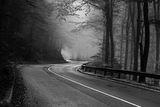 Надолу в мъглата.... ; Comments:15