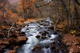 Рилска река ; Comments:4
