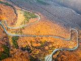Пътя към Бузлуджа ; comments:6