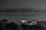 мъглива утрин ; Comments:9