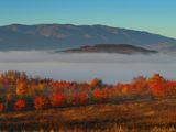 Утринна мъгла в Кюстендилско ; comments:17