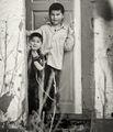 Някъде в Средна Азия... ; comments:7