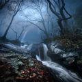 Един късен ноемврийски ден ; comments:67
