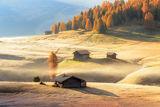 Есенна утрин ; comments:46