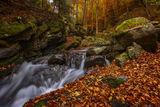 Есенно... ; Comments:10