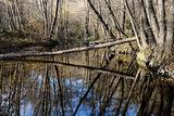 Река Младежка ; Comments:1