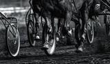 Състезание с колелата... ; comments:17