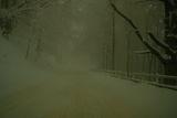 Умерена мъгла в Перохан ; comments:14