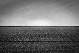Landscape ; comments:2