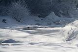 Зимно ; Comments:8
