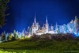 Pelesh Castle - Romania ; comments:5