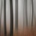 Омагьосана гора ; comments:4
