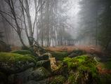 Горски истории / Есен ; comments:33