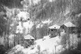 Зима. Мълчаливо утро, празни пътеки, сън без сънуване! ; Comments:8