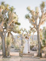 Joshua Tree Elopement ; Comments:1