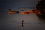 Рибарят ; comments:6