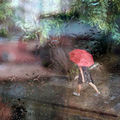 Летен дъжд ; comments:36