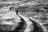 Следвай ме... ; comments:31