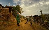 Живот в Родопите ; comments:10