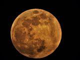 Голямата Луна на  19.02.2019г ; comments:10