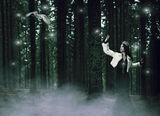 Darkwood: The Messenger... ; Comments:2