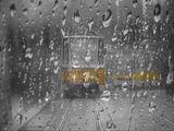 Дъждовен ден ; comments:10