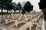 Българио, за тебе те умряха ... ; comments:8