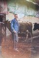 Ежедневието на един български фермер .. ; comments:5