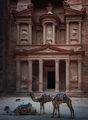 Съкровищницата на Петра (Al-Khazneh) ; comments:18