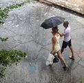 Летен дъжд ; comments:24