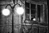 Нощем по прозорците ; comments:6