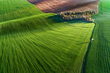Пролет в равнината.... ; Comments:44