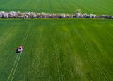 пролет по Българските поля ; comments:10