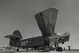 Български Ан-2 на летище Долна Митрополия ; Коментари:7