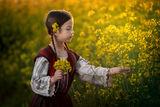 Нежно жълто... ; comments:11