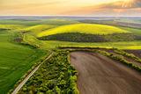 Живописна гледка от Дунавската равнина ; comments:5