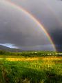 След дъжда ; comments:6