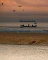 Риболовни истории ; Comments:9